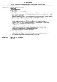 Community Organizer Resume Social Media Manager Resume Sample Velvet Jobs