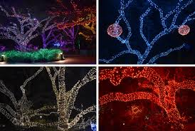 Lights At The Zoo by Channeling My Inner Child At Houston Zoo Lights U2013 Red Shoes Red Wine