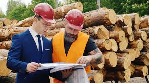 bearded builder and engineer work together with construction