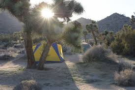 Joshua Tree Campground Map Joshua Tree Camping Guide For Desert Adventurers
