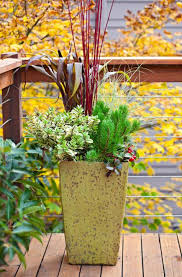 fresh fall container gardens midwest living