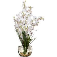 silk orchids modern contemporary silk orchid arrangements allmodern