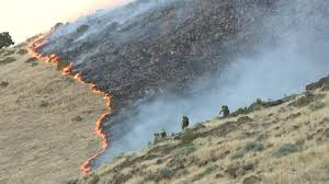 Wildfire Near Reno by Placer County Crews Join Wildfire Containment Effort North Of Reno