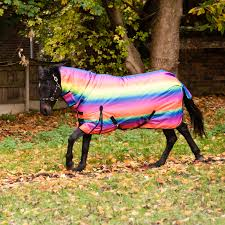 Waterproof Outdoor Rugs Pony Horse Heavyweight Combo Neck Turnout Rug Waterproof Outdoor