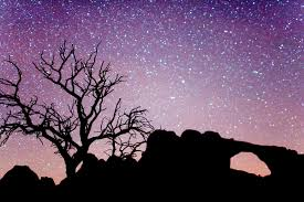 file arches national park night jpg wikimedia commons