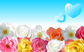 flower wallpapers for desktop wallpaper 654103