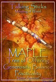 maple tree of offering generosity balance practicality magick