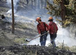 British Columbia Wildfire Service by Tickets For Wildfire Infractions In B C Spiked In 2015 Report