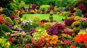 home scotch plains landscaping and lawn care