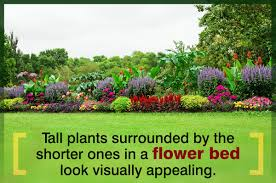 easy tips on how to make a flower bed that everyone will admire