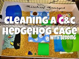 cleaning a hedgehog c u0026c cage with bedding 2015 youtube