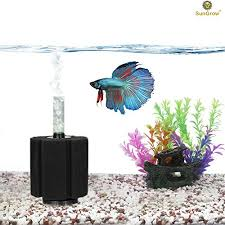 How To Clean Fish Tank Decorations 11 Steps Simplified How To Clean A Betta Fish Tank Super Easy