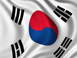 South Korea Flag Stylerush Smart Ceramic Coated Styling Iron Made In South Korea