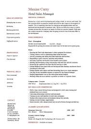 Resume For Sales Executive Job by Hotel Sales Manager Resume Hospitality Marketing Guests