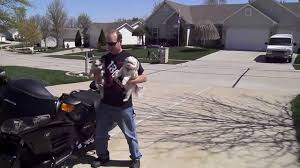 honda f6b gold wing deluxe 2013 youtube