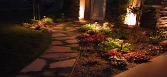 Landscape Low Voltage Lighting Low Voltage Lighting Services