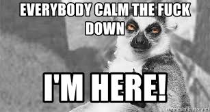 Calm The Fuck Down Meme - everybody calm the fuck down i m here sloth calm down meme