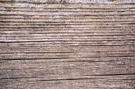 free images post structure texture plank floor trunk
