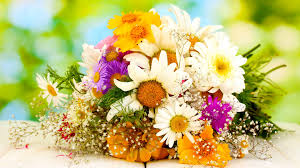 flowers delivery same day same day flower delivery wallpaper
