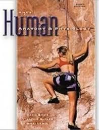 Human Anatomy And Physiology Books Hole U0027s Human Anatomy And Physiology Student Edition 12th Edition