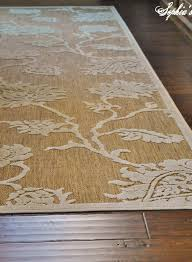 Cheap Outdoor Rugs by Ideas Indoor Outdoor Rugs Home Depot And Home Depot Indoor
