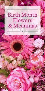flower of the month birth flowers hallmark ideas inspiration
