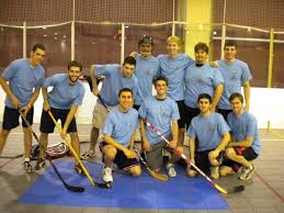 floor hockey houses flooring picture ideas blogule