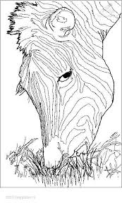 11 coloring sheets images horse coloring pages