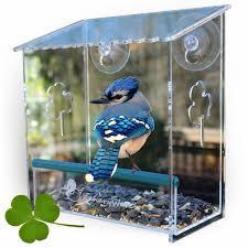 Jewel Box Window Hummingbird Feeder Amazon Com Window Bird Feeder Best For Small And Large Wild