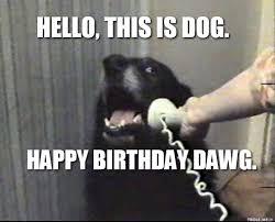 Funny Animal Birthday Memes - dog birthday meme funny dog birthday meme 100 ultimate funny happy