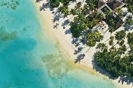 best hotels in the maldives taj exotica condé nast traveller