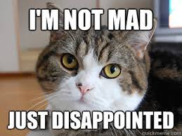 Mad Cat Memes - judgment cat memes quickmeme