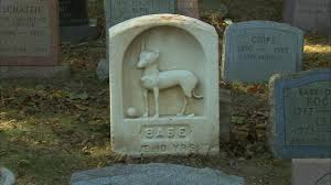 hartsdale is home to the oldest pet cemetery in the u s abc7ny com