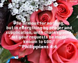 in prayer and supplication with thanksgiving flowery blessing august 2014