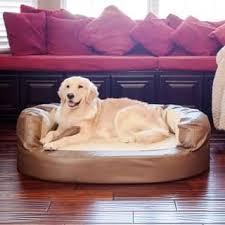 Covered Dog Bed Pet Beds Shop The Best Deals For Nov 2017 Overstock Com