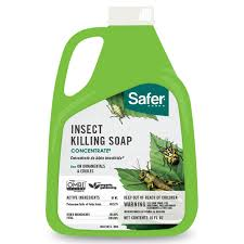 amazon com safer brand 5118 insect killing soap 16 ounce