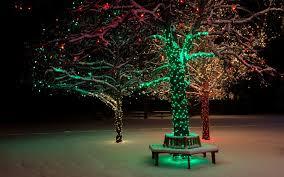 winter park christmas lights trees lights christmas winter snow park wallpapers hd desktop