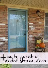 painted metal storm door and front door storm doors glass storm
