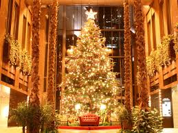 Christmas Tree by The History Of Christmas Trees Wallpapers Photos Pictures