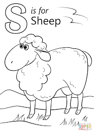 free sheep coloring page merino sheep kids pages lamb chop