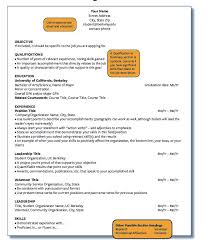 Resume Affiliations Examples by Best 20 Resume Outline Ideas On Pinterest Resume Resume Tips