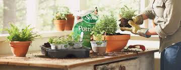 how to make your own indoor herb garden