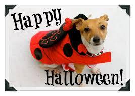 spirit halloween orlando happy halloween