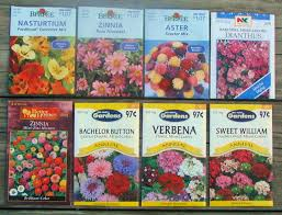 seed packets butterfly flower seed packets twilight insight
