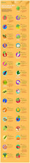 list of fruit and vegetables 10 definitive guides to growing and