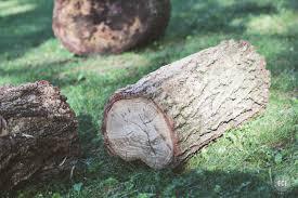 Rustic Log Benches - diy wedding seating rustic log benches ec2blog