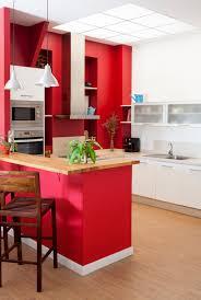 Indian Kitchen Furniture Designs Home Design Sliding Closet Doors Ikea Bath Remodelers Furniture