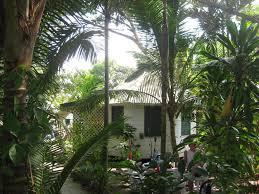 chippewa village negril jamaica booking com
