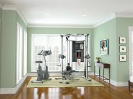 Home Gym Ideas 77 Best Inspiring Home Gyms Images On Pinterest Gym Basement