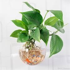 ivolador hanging glass flower planter vase terrarium container